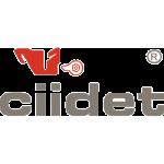 Logo CIIDET